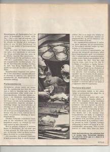 Artikel side 2